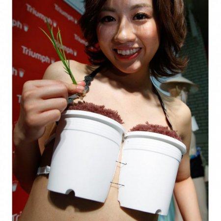 Ох уж эти японцы!
