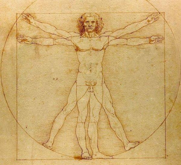 Распространенные мифы о человеческом теле