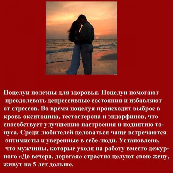 Интересно о поцелуях