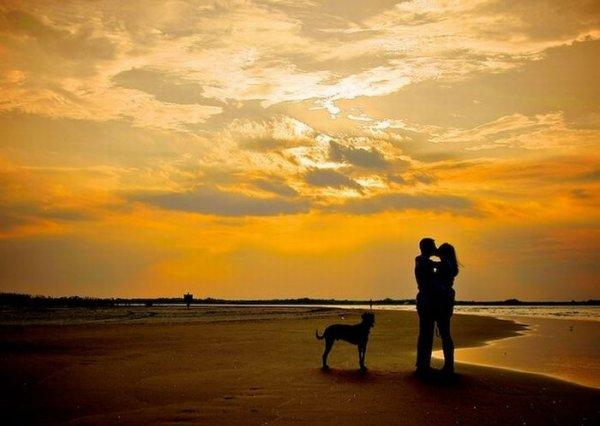 Романтические фото