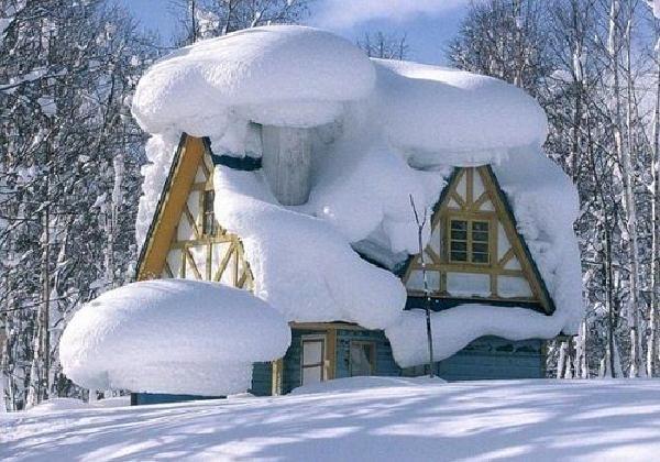 Атмосферный циклон принёс в Украину снегопады. На дорогах местами гололедица - Цензор.НЕТ 795