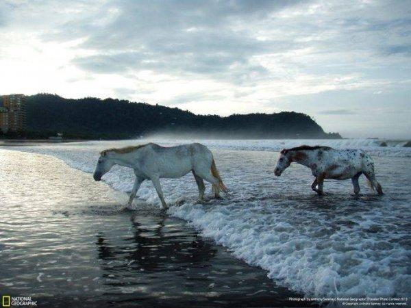 Потрясающие фотографии природы от National Geographic