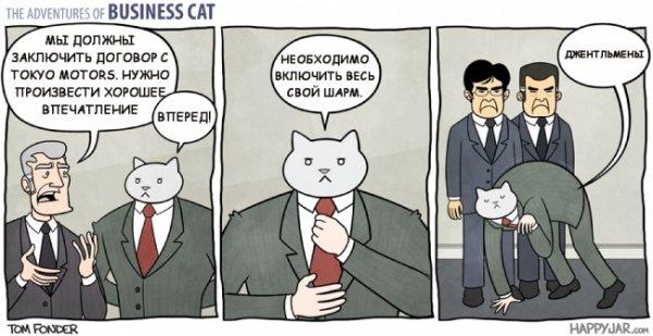 Если бы кот стал бизнесменом